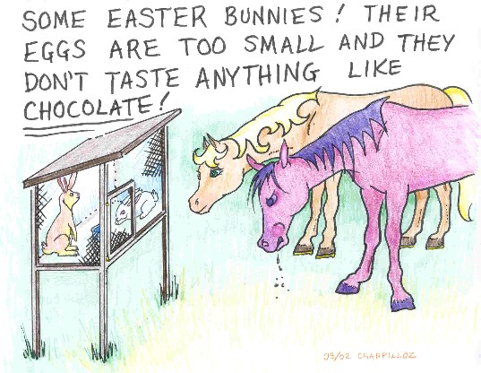 funny bunny pictures. funny bunny. Funny Bunnies